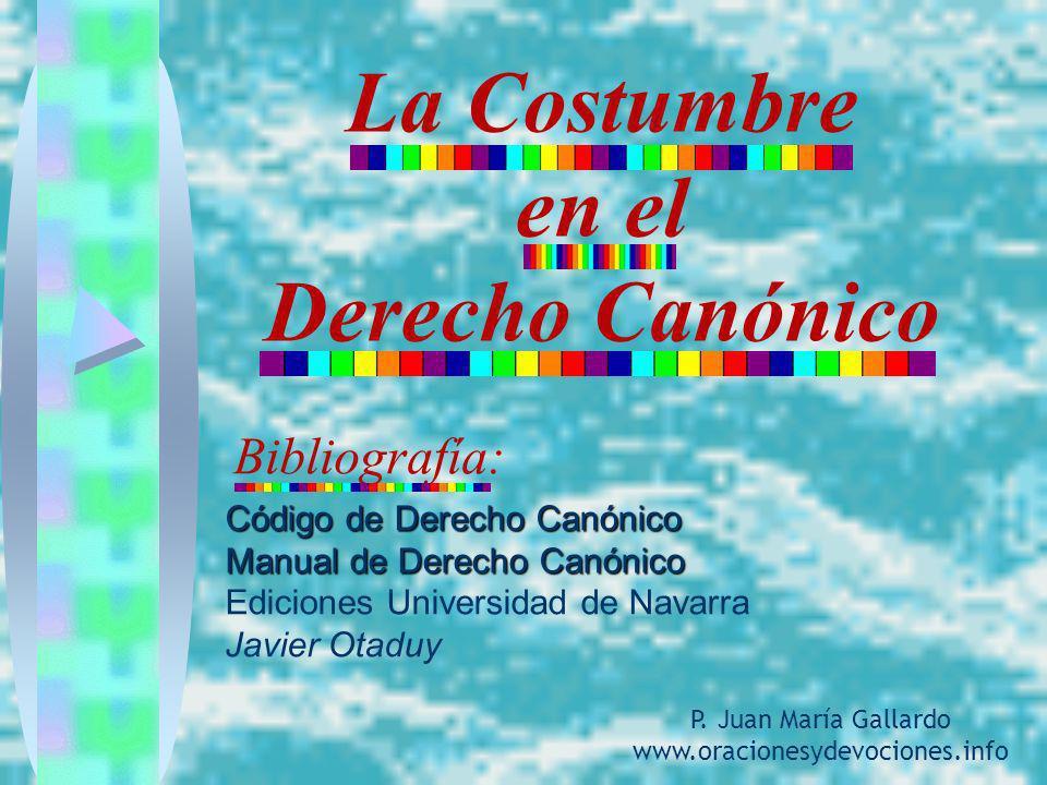 La Costumbre en el Derecho Canónico Bibliografía: Código de Derecho Canónico Manual de Derecho Canónico Ediciones Universidad de Navarra Javier Otaduy
