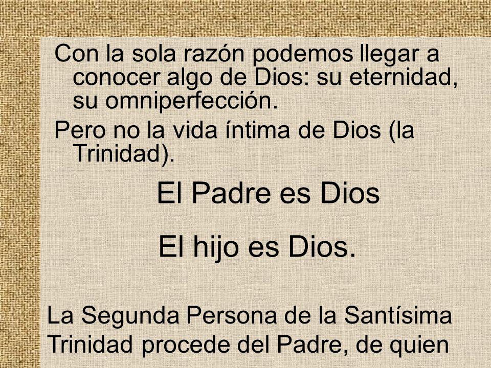 Con la sola razón podemos llegar a conocer algo de Dios: su eternidad, su omniperfección. Pero no la vida íntima de Dios (la Trinidad). El Padre es Di