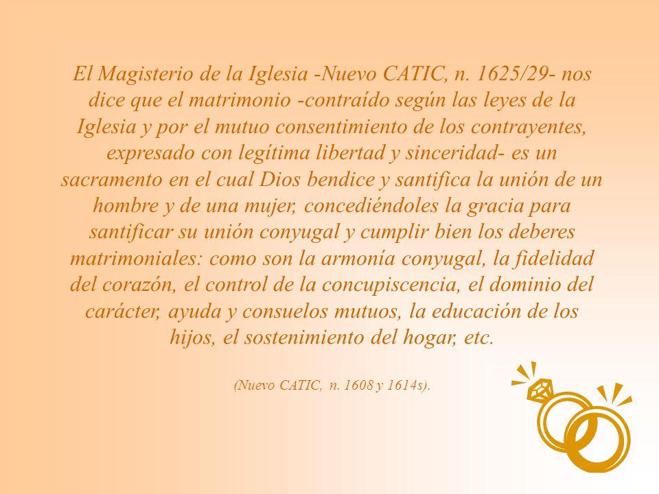 El Magisterio de la Iglesia -Nuevo CATIC, n.