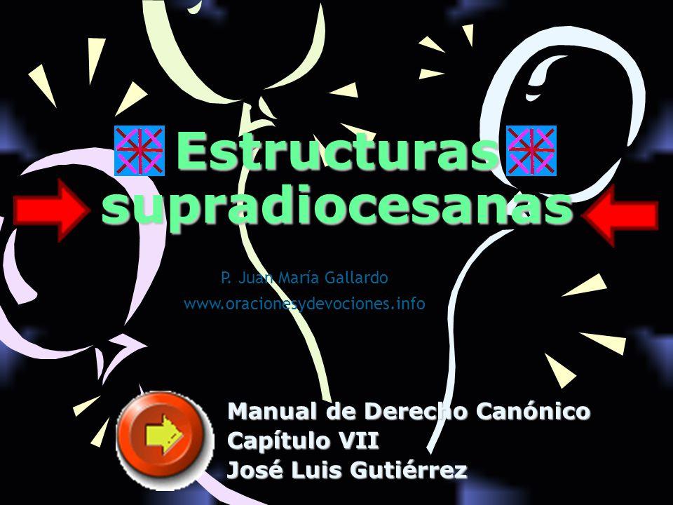 Estructuras supradiocesanas Manual de Derecho Canónico Capítulo VII José Luis Gutiérrez P. Juan María Gallardo www.oracionesydevociones.info