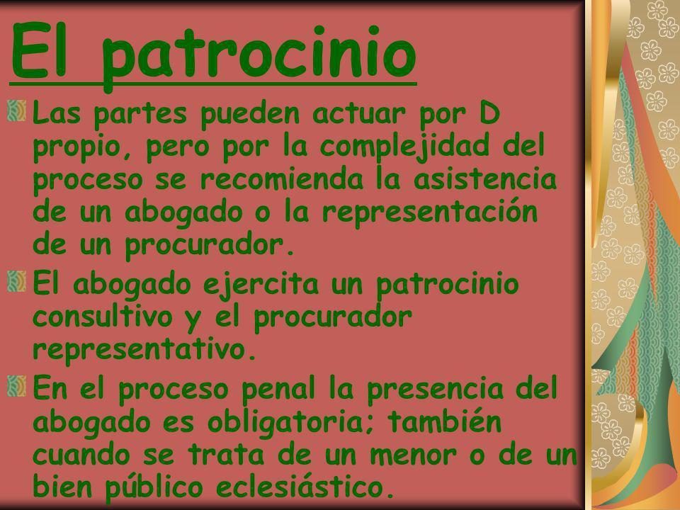El patrocinio Las partes pueden actuar por D propio, pero por la complejidad del proceso se recomienda la asistencia de un abogado o la representación