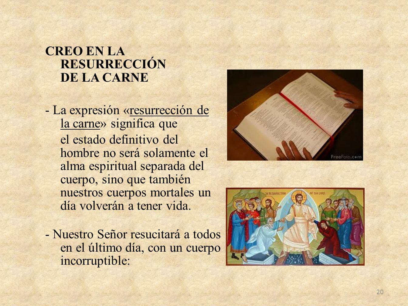 CREO EN LA RESURRECCIÓN DE LA CARNE - La expresión «resurrección de la carne» significa que el estado definitivo del hombre no será solamente el alma