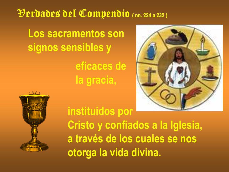 Verdades del Compendio ( nn. 224 a 232 ) Los sacramentos son signos sensibles y eficaces de la gracia, instituidos por Cristo y confiados a la Iglesia
