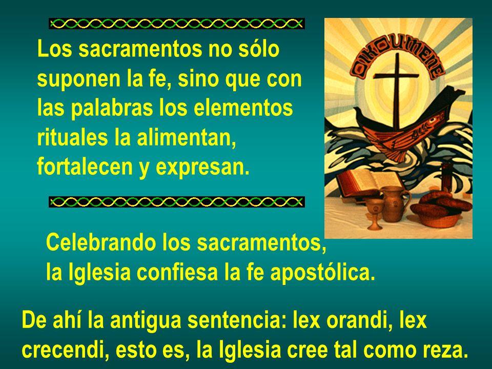 Los sacramentos no sólo suponen la fe, sino que con las palabras los elementos rituales la alimentan, fortalecen y expresan. Celebrando los sacramento