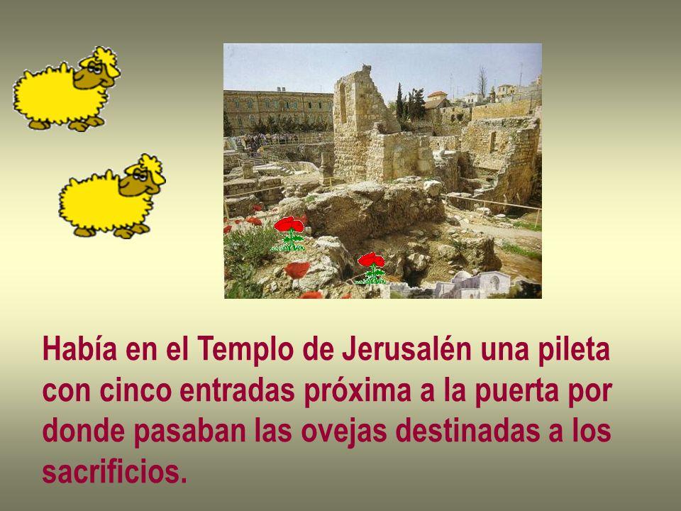 Había en el Templo de Jerusalén una pileta con cinco entradas próxima a la puerta por donde pasaban las ovejas destinadas a los sacrificios.