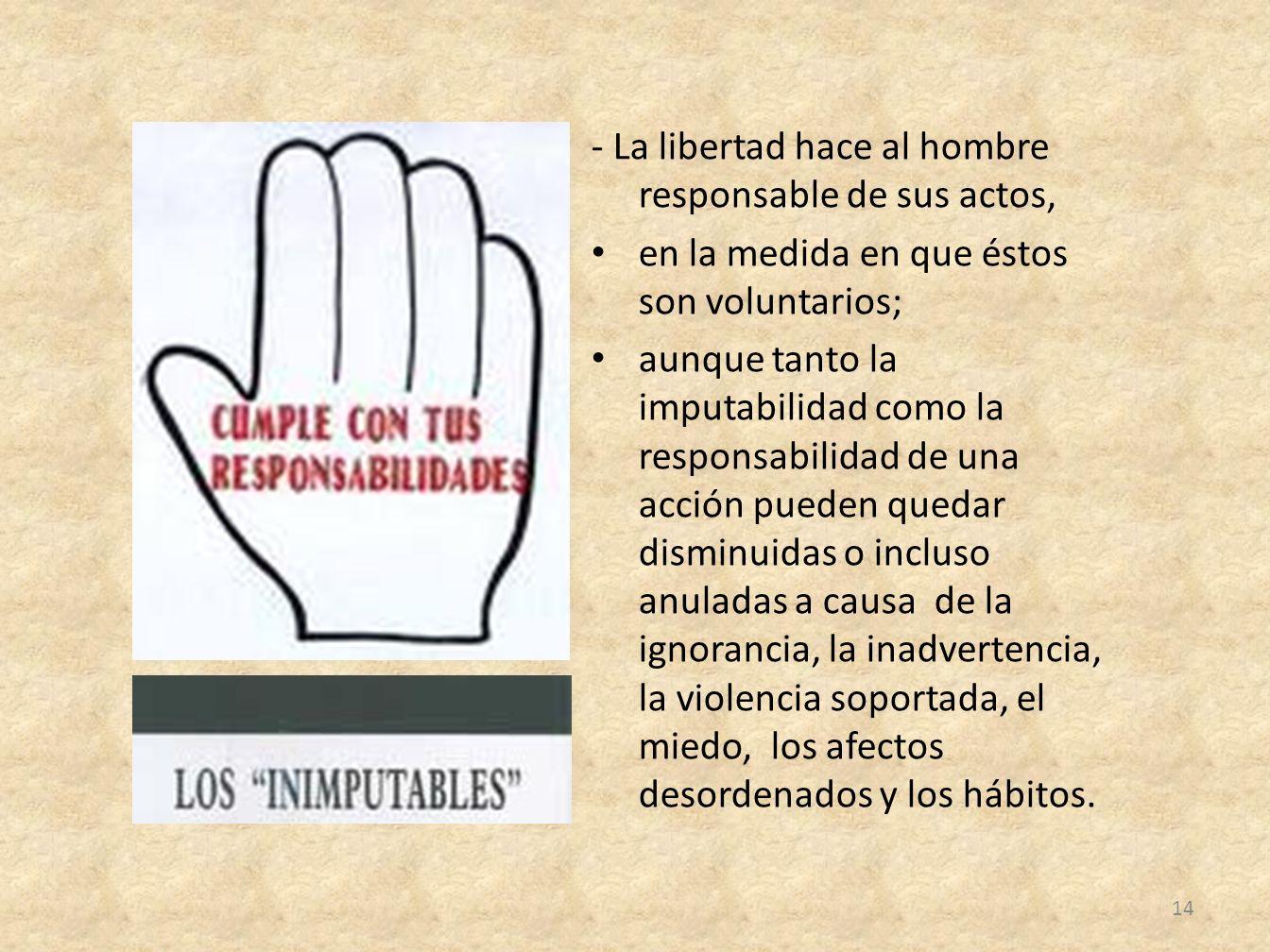 - La libertad hace al hombre responsable de sus actos, en la medida en que éstos son voluntarios; aunque tanto la imputabilidad como la responsabilida