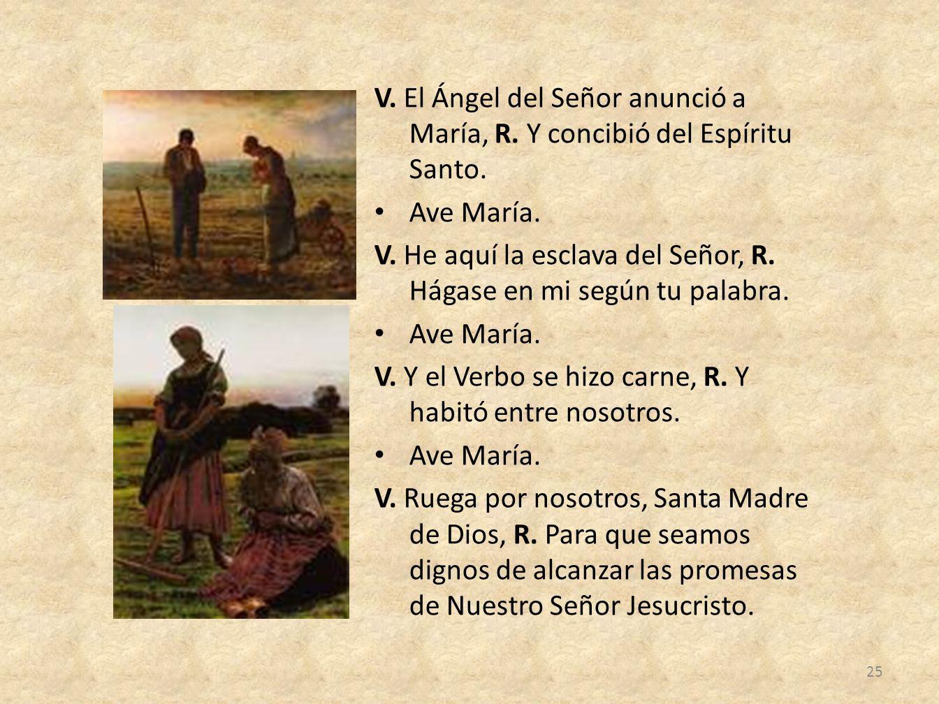 V. El Ángel del Señor anunció a María, R. Y concibió del Espíritu Santo. Ave María. V. He aquí la esclava del Señor, R. Hágase en mi según tu palabra.