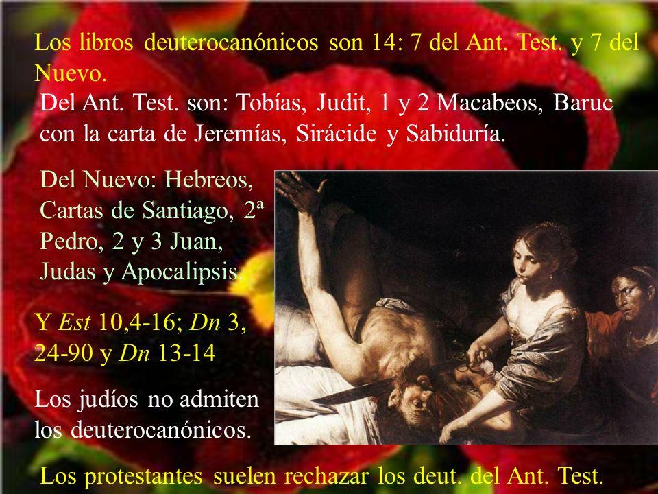 Los libros deuterocanónicos son 14: 7 del Ant. Test. y 7 del Nuevo. Del Ant. Test. son: Tobías, Judit, 1 y 2 Macabeos, Baruc con la carta de Jeremías,