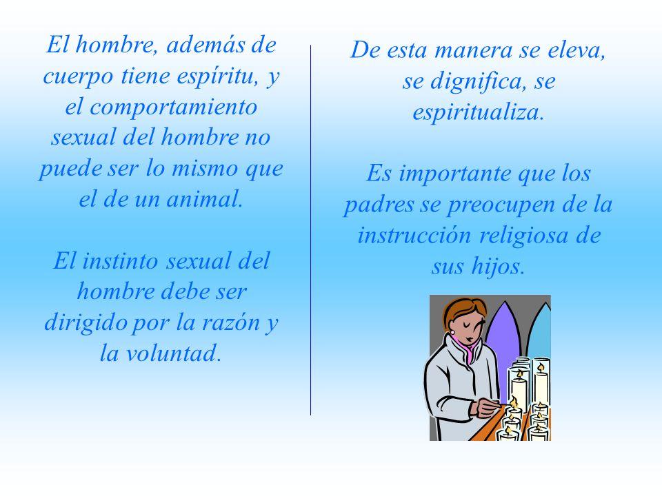 El hombre, además de cuerpo tiene espíritu, y el comportamiento sexual del hombre no puede ser lo mismo que el de un animal.
