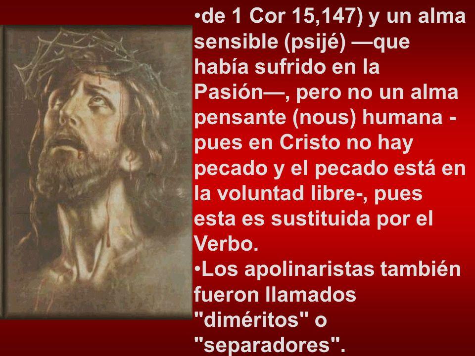 –Contra los que difieren el Bautismo; –Sobre los cuarenta mártires de Sebaste; –24 cartas.