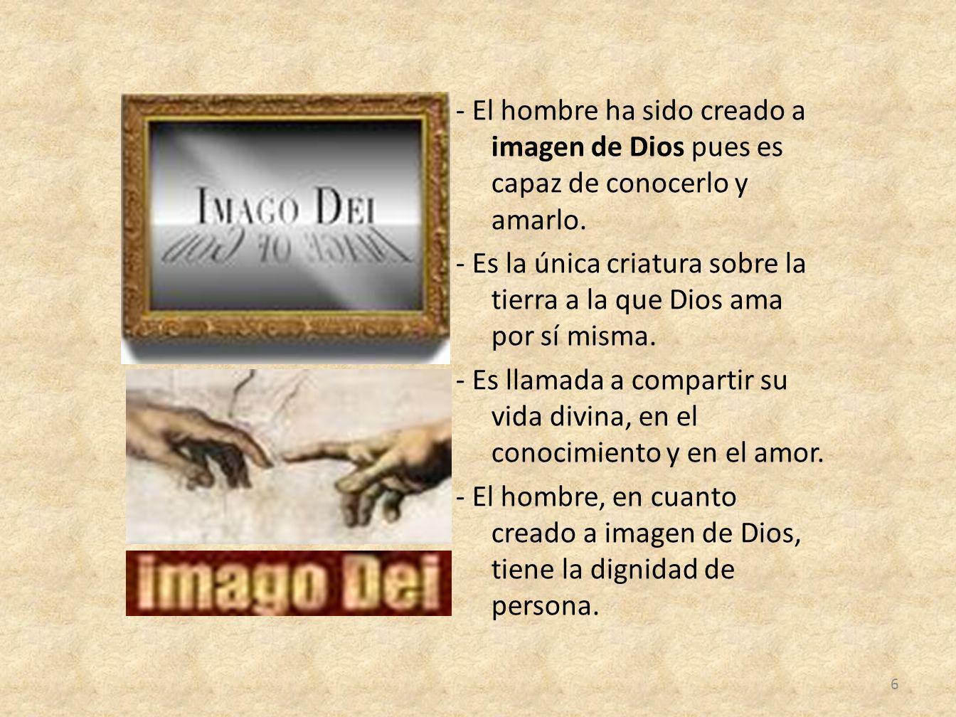 - El hombre ha sido creado a imagen de Dios pues es capaz de conocerlo y amarlo. - Es la única criatura sobre la tierra a la que Dios ama por sí misma