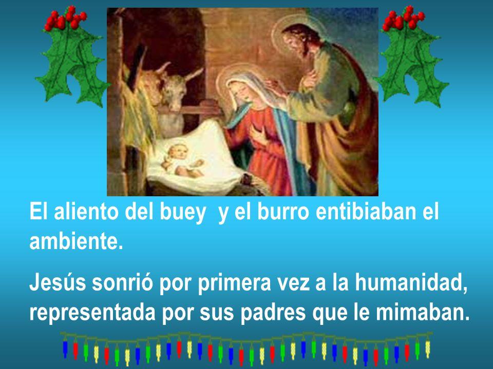 El aliento del buey y el burro entibiaban el ambiente. Jesús sonrió por primera vez a la humanidad, representada por sus padres que le mimaban.