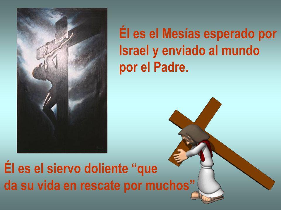 Él es el Mesías esperado por Israel y enviado al mundo por el Padre. Él es el siervo doliente que da su vida en rescate por muchos