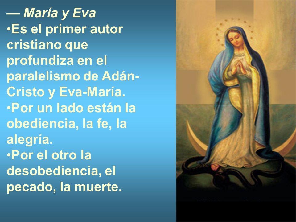 María y Eva Es el primer autor cristiano que profundiza en el paralelismo de Adán- Cristo y Eva-María. Por un lado están la obediencia, la fe, la aleg