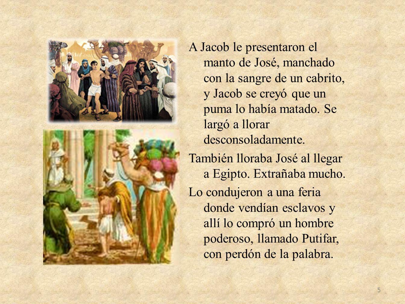 A Jacob le presentaron el manto de José, manchado con la sangre de un cabrito, y Jacob se creyó que un puma lo había matado. Se largó a llorar descons