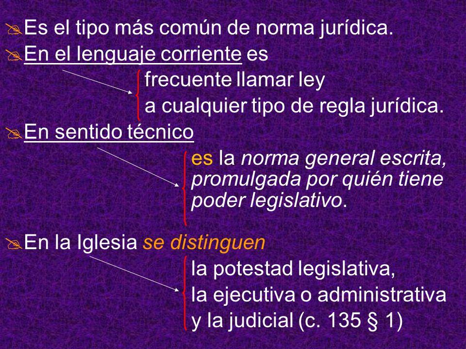 Es el tipo más común de norma jurídica. En el lenguaje corriente es frecuente llamar ley a cualquier tipo de regla jurídica. En sentido técnico es la