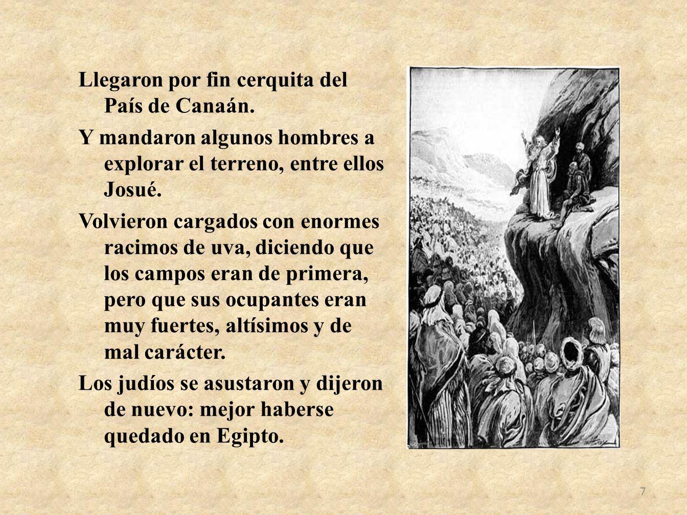 Llegaron por fin cerquita del País de Canaán. Y mandaron algunos hombres a explorar el terreno, entre ellos Josué. Volvieron cargados con enormes raci