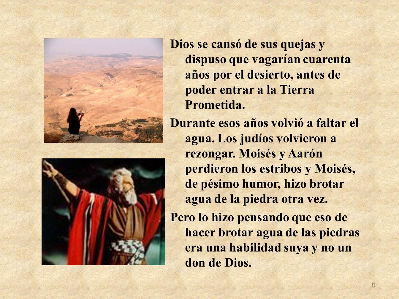 Dios se cansó de sus quejas y dispuso que vagarían cuarenta años por el desierto, antes de poder entrar a la Tierra Prometida. Durante esos años volvi