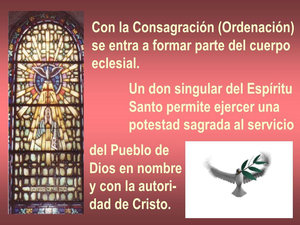 Con la Consagración (Ordenación) se entra a formar parte del cuerpo eclesial. Un don singular del Espíritu Santo permite ejercer una potestad sagrada