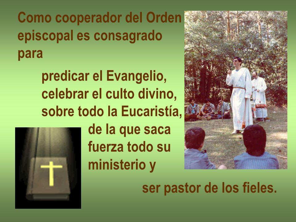 Como cooperador del Orden episcopal es consagrado para predicar el Evangelio, celebrar el culto divino, sobre todo la Eucaristía, de la que saca fuerz