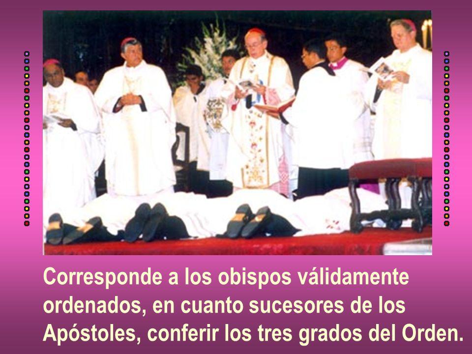 Corresponde a los obispos válidamente ordenados, en cuanto sucesores de los Apóstoles, conferir los tres grados del Orden.