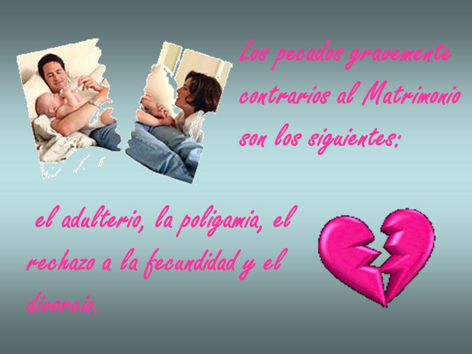 Los pecados gravemente contrarios al Matrimonio son los siguientes: el adulterio, la poligamia, el rechazo a la fecundidad y el divorcio.