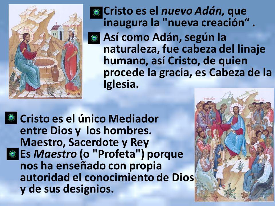 Cristo es el nuevo Adán, que inaugura la