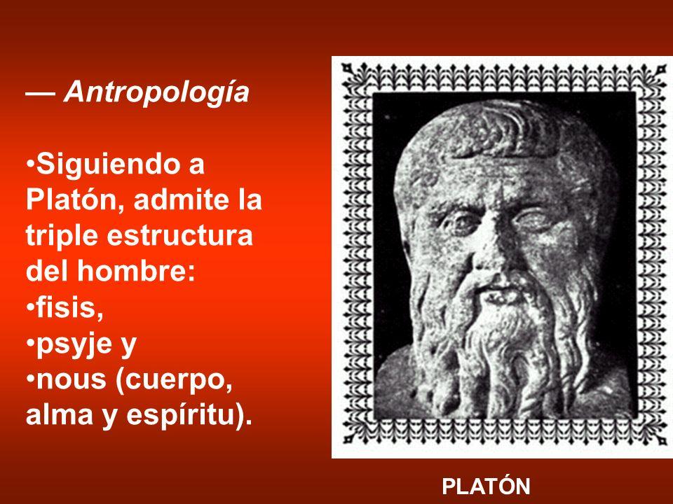 Antropología Siguiendo a Platón, admite la triple estructura del hombre: fisis, psyje y nous (cuerpo, alma y espíritu). PLATÓN