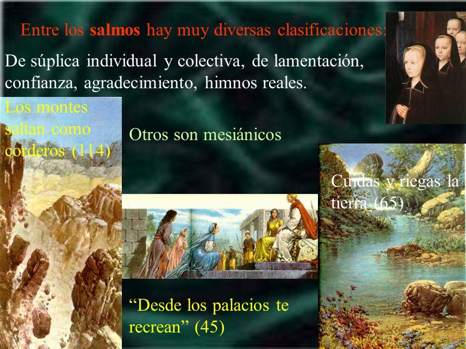 Entre los salmos hay muy diversas clasificaciones: Los montes saltan como corderos (114) Desde los palacios te recrean (45) Cuidas y riegas la tierra