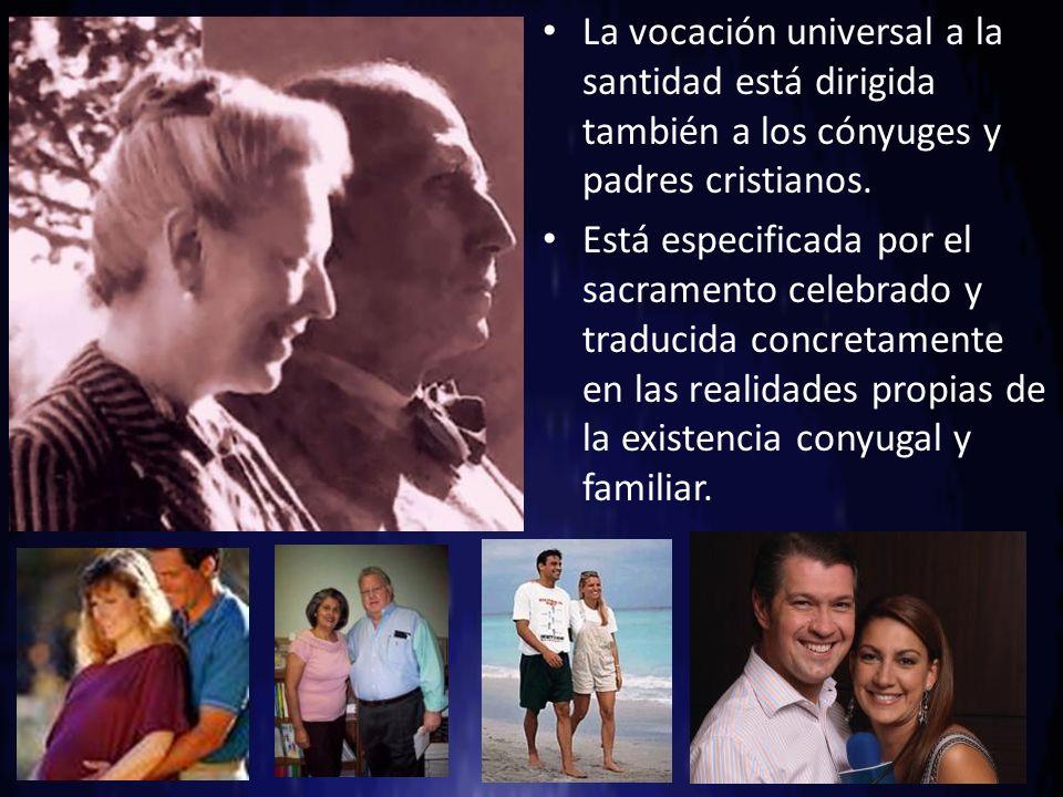 La vocación universal a la santidad está dirigida también a los cónyuges y padres cristianos. Está especificada por el sacramento celebrado y traducid
