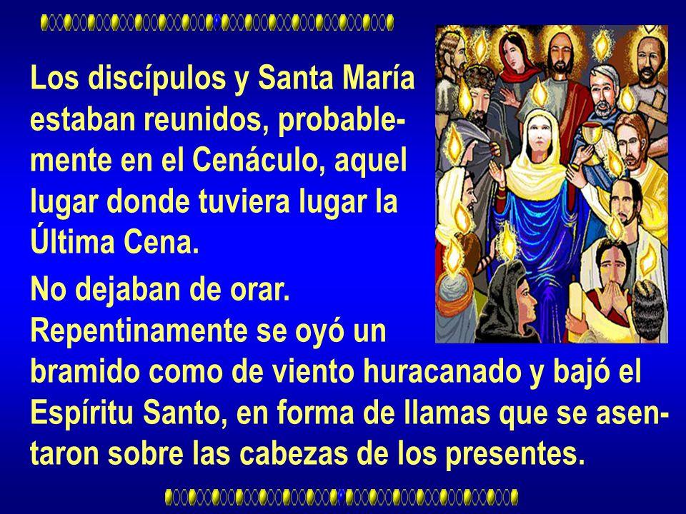 Los discípulos y Santa María estaban reunidos, probable- mente en el Cenáculo, aquel lugar donde tuviera lugar la Última Cena. No dejaban de orar. Rep