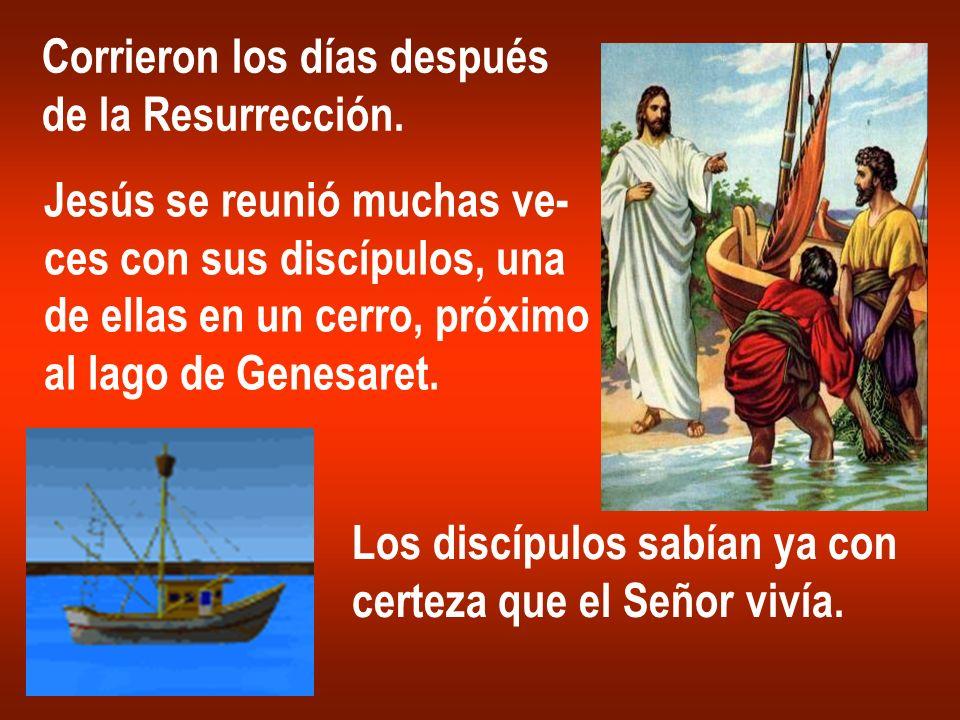Corrieron los días después de la Resurrección. Jesús se reunió muchas ve- ces con sus discípulos, una de ellas en un cerro, próximo al lago de Genesar