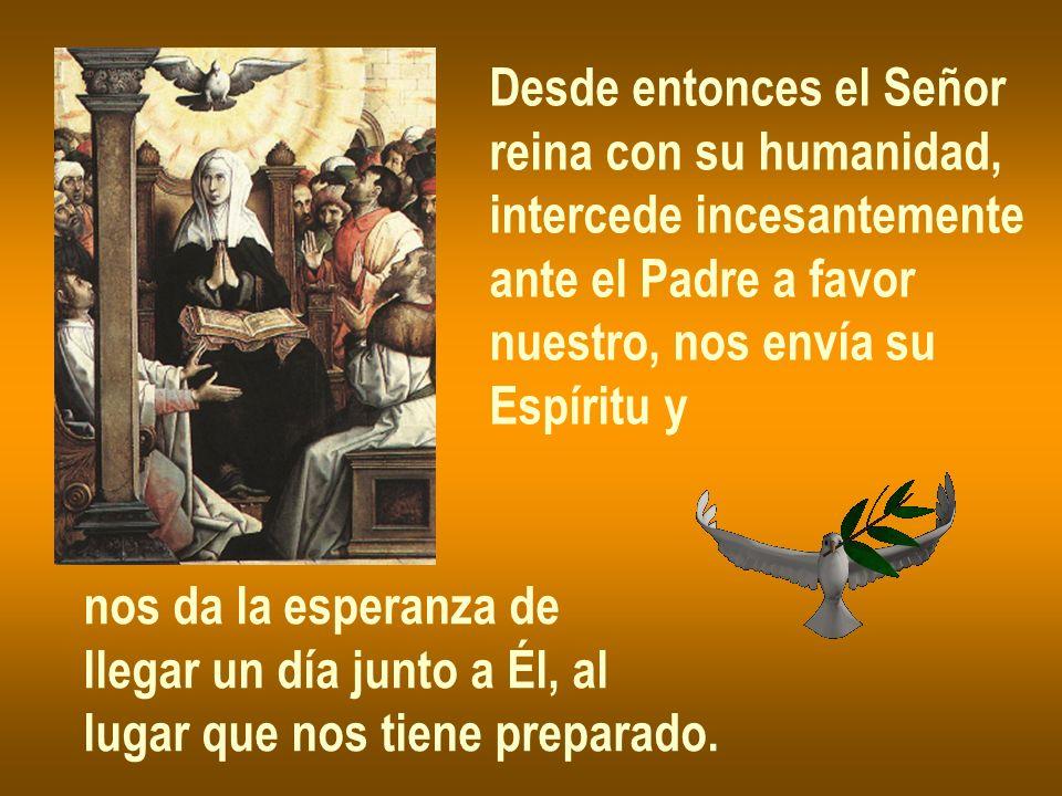 Desde entonces el Señor reina con su humanidad, intercede incesantemente ante el Padre a favor nuestro, nos envía su Espíritu y nos da la esperanza de