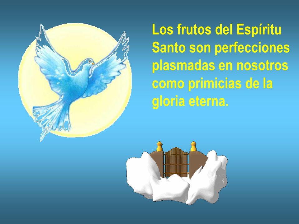 Los frutos del Espíritu Santo son perfecciones plasmadas en nosotros como primicias de la gloria eterna.