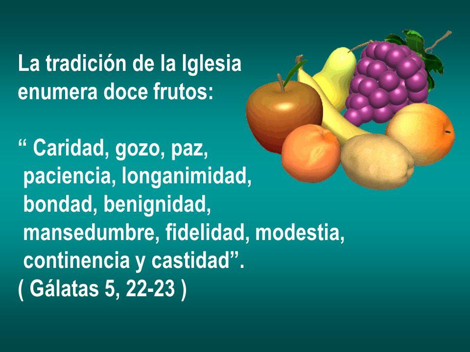 La tradición de la Iglesia enumera doce frutos: Caridad, gozo, paz, paciencia, longanimidad, bondad, benignidad, mansedumbre, fidelidad, modestia, con