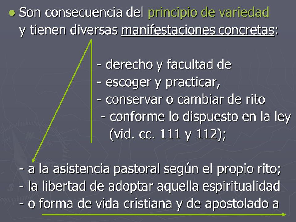 Son consecuencia del principio de variedad Son consecuencia del principio de variedad y tienen diversas manifestaciones concretas: - derecho y faculta