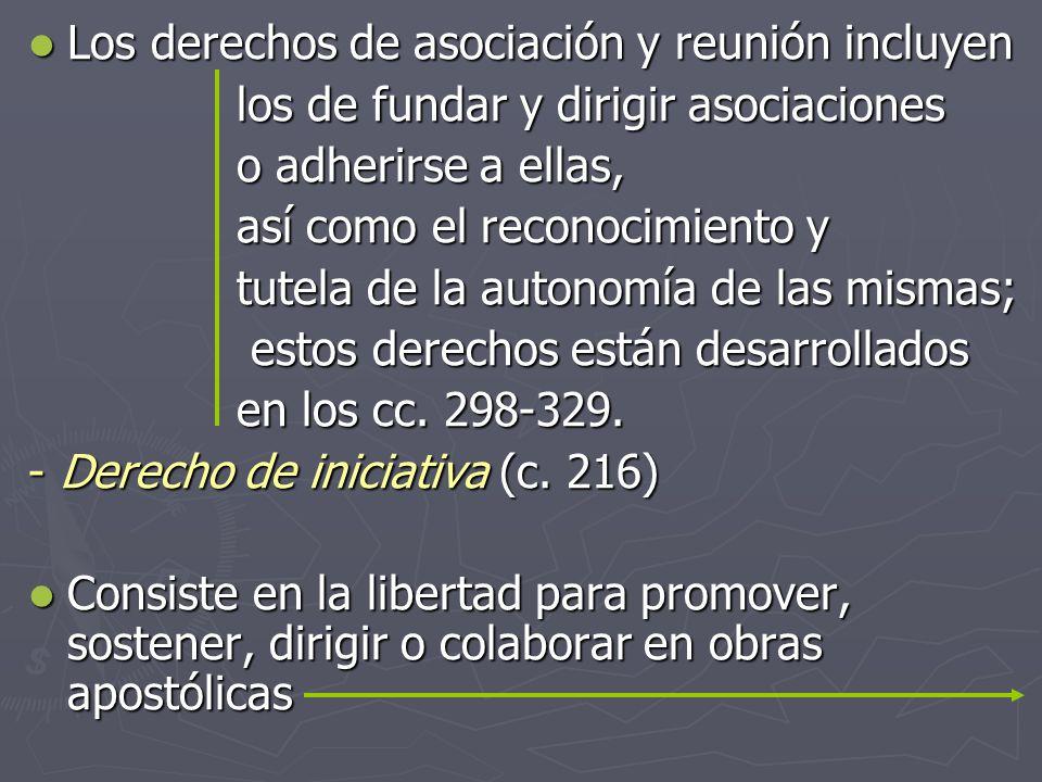 Los derechos de asociación y reunión incluyen Los derechos de asociación y reunión incluyen los de fundar y dirigir asociaciones o adherirse a ellas,