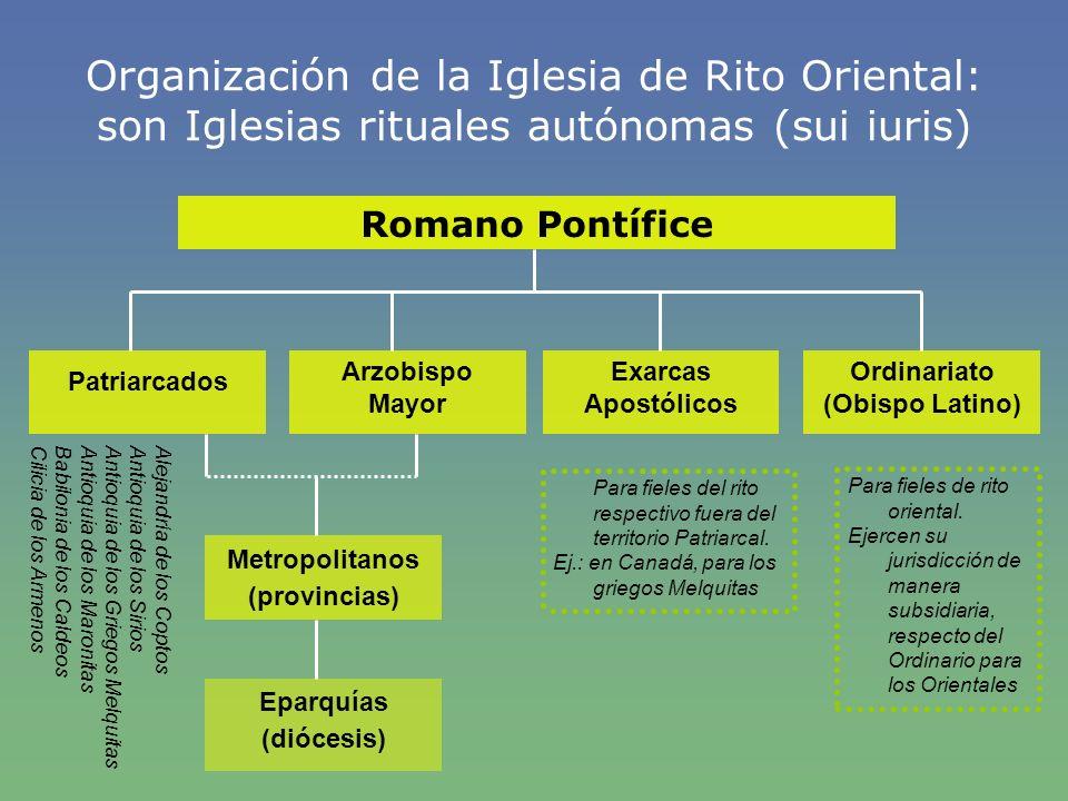 Organización de la Iglesia de Rito Oriental: son Iglesias rituales autónomas (sui iuris) Romano Pontífice Patriarcados Arzobispo Mayor Exarcas Apostól