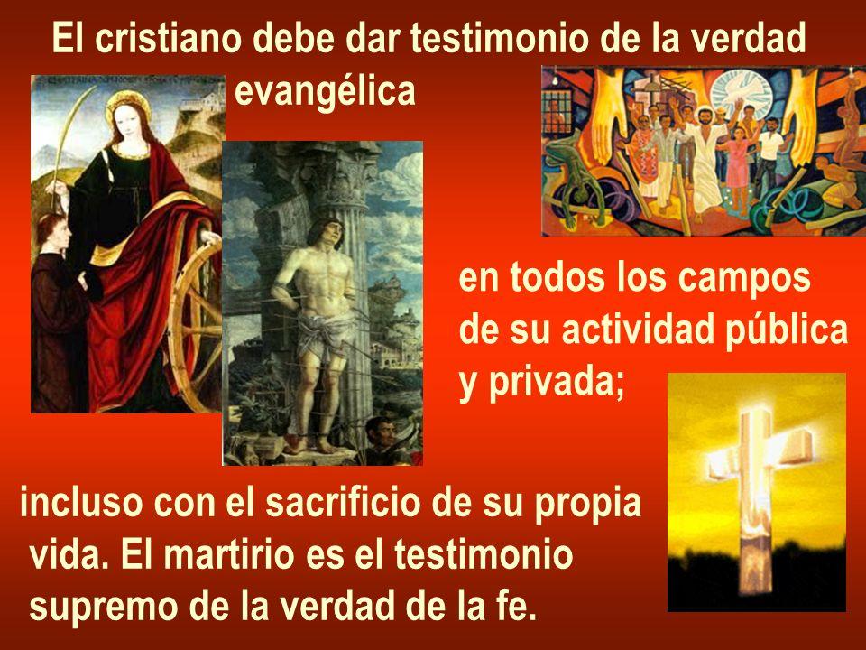 El cristiano debe dar testimonio de la verdad evangélica en todos los campos de su actividad pública y privada; incluso con el sacrificio de su propia vida.