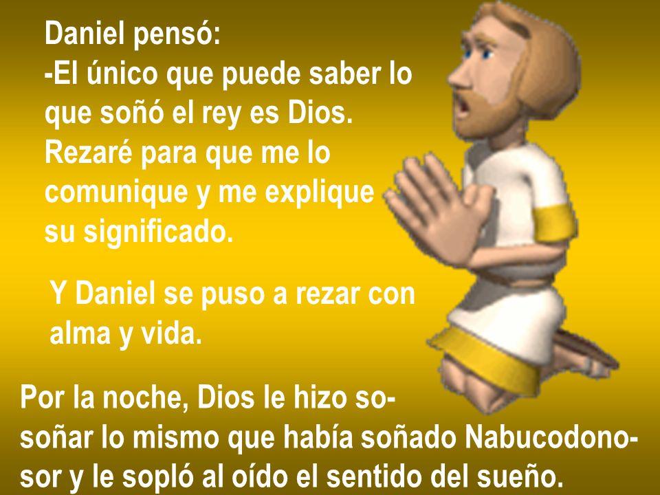 Daniel pensó: -El único que puede saber lo que soñó el rey es Dios.