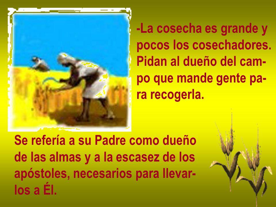 -La cosecha es grande y pocos los cosechadores. Pidan al dueño del cam- po que mande gente pa- ra recogerla. Se refería a su Padre como dueño de las a