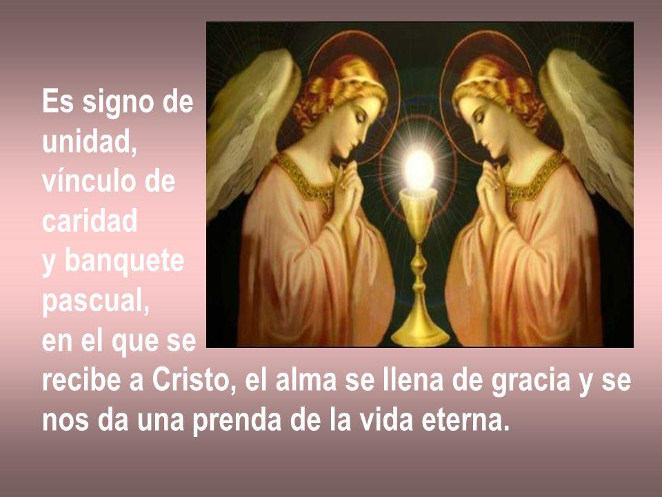 Es signo de unidad, vínculo de caridad y banquete pascual, en el que se recibe a Cristo, el alma se llena de gracia y se nos da una prenda de la vida
