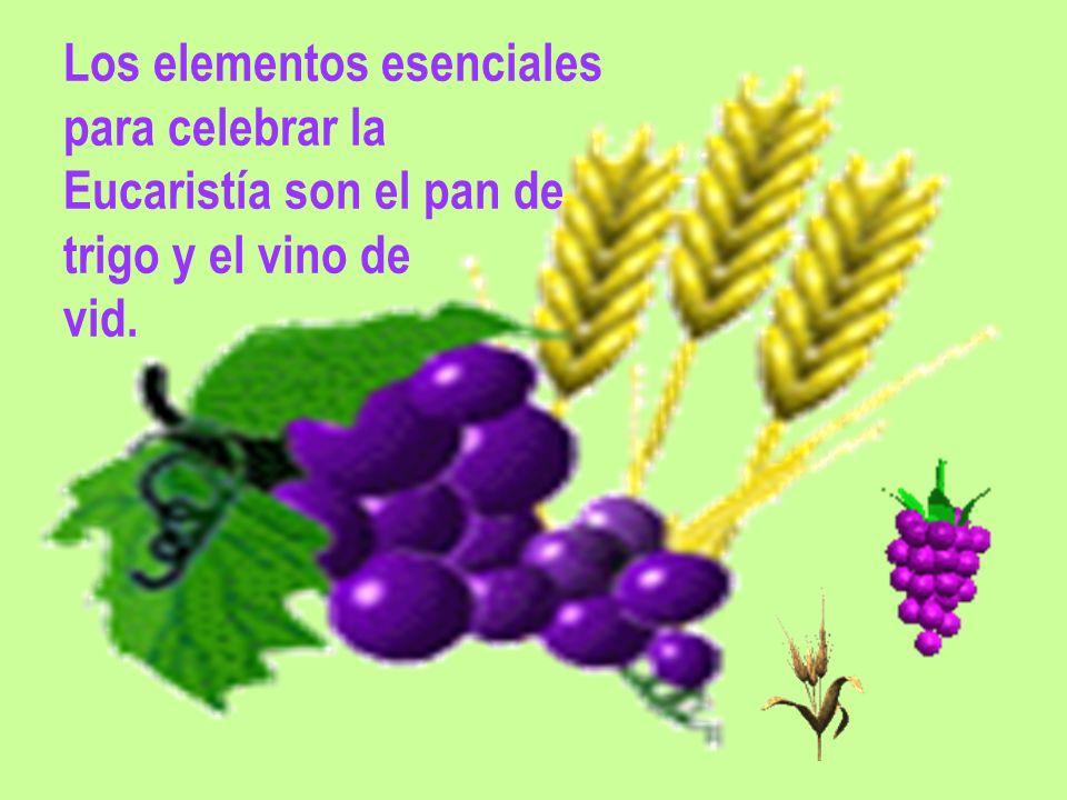 Los elementos esenciales para celebrar la Eucaristía son el pan de trigo y el vino de vid.