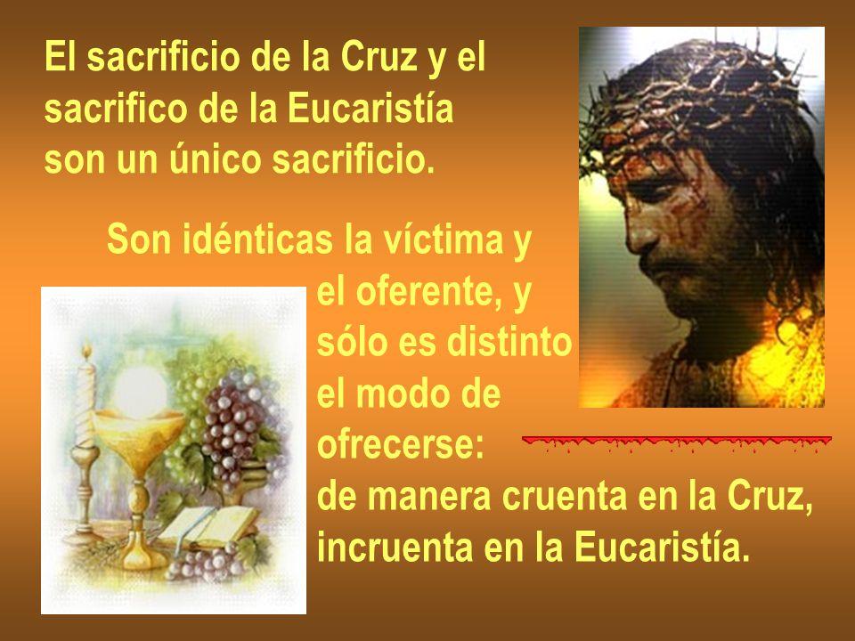 El sacrificio de la Cruz y el sacrifico de la Eucaristía son un único sacrificio. Son idénticas la víctima y el oferente, y sólo es distinto el modo d