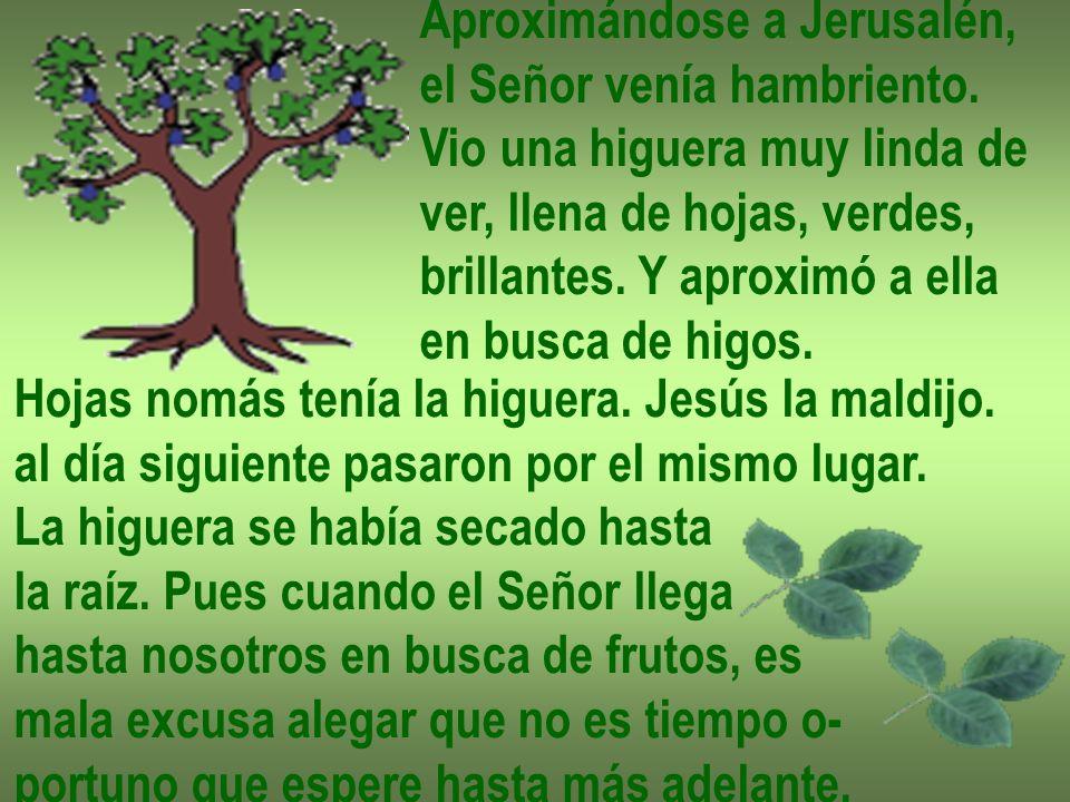Un gran trigal se extendía ante los ojos de Jesús y su pequeña comitiva.
