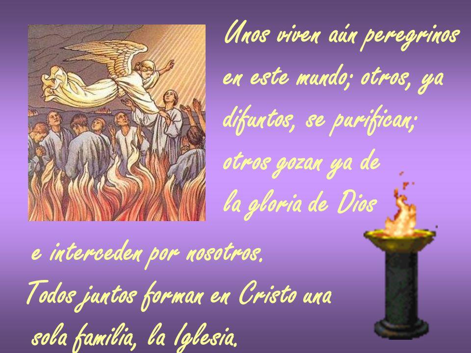 Unos viven aún peregrinos en este mundo; otros, ya difuntos, se purifican; otros gozan ya de la gloria de Dios e interceden por nosotros. Todos juntos