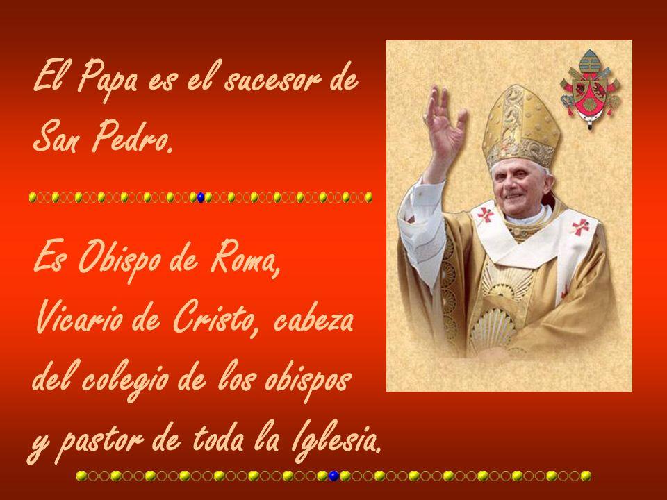 El Papa es el sucesor de San Pedro. Es Obispo de Roma, Vicario de Cristo, cabeza del colegio de los obispos y pastor de toda la Iglesia.