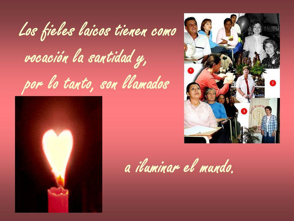 Los fieles laicos tienen como vocación la santidad y, por lo tanto, son llamados a iluminar el mundo.