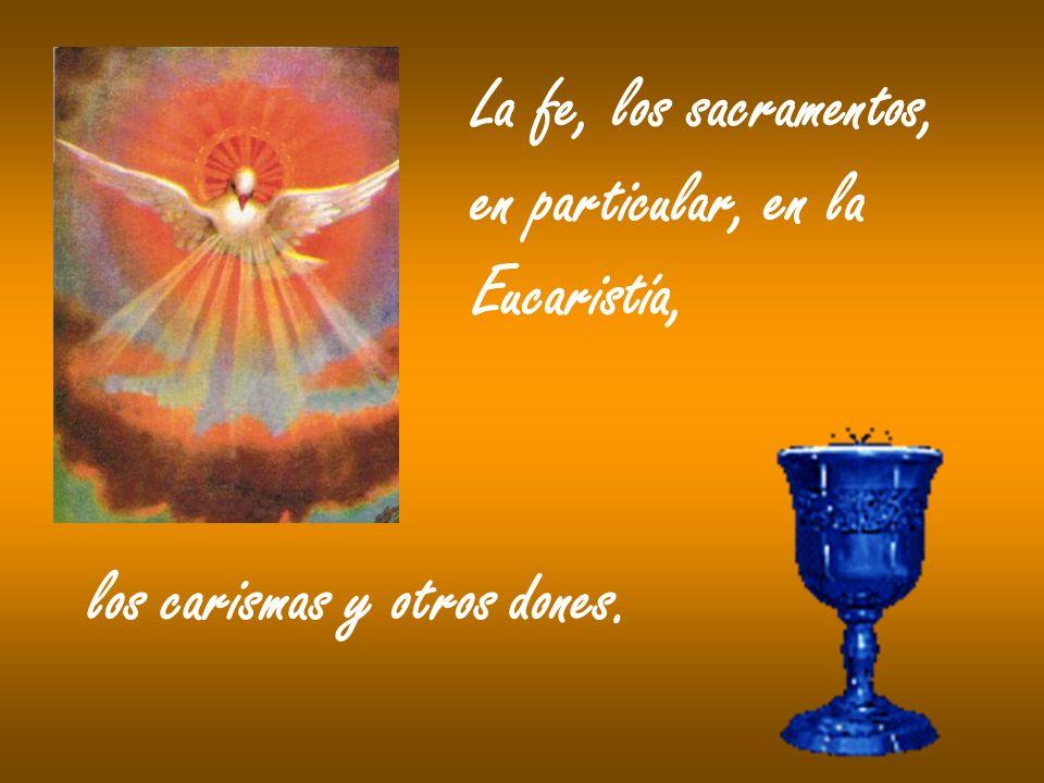 La fe, los sacramentos, en particular, en la Eucaristía, los carismas y otros dones.