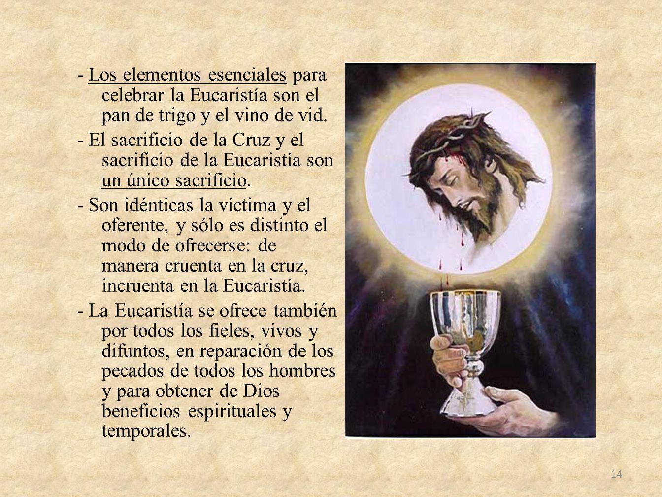 - Los elementos esenciales para celebrar la Eucaristía son el pan de trigo y el vino de vid. - El sacrificio de la Cruz y el sacrificio de la Eucarist